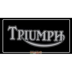 Pilot Mat Triumph (50 cm X...