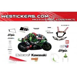 Kawasaki SBK 2013 replica...