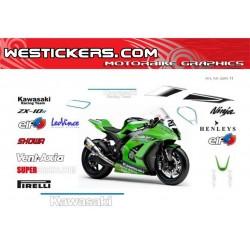 Kawasaki SBK 2011 Race...