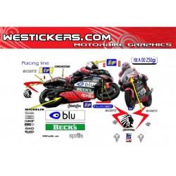 Kit Aprilia MS team 250GP 2000